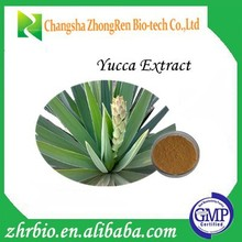High Quality 100% Pure Natural Yucca Root Extract 30%-60%Sarsaponin