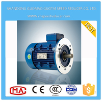 China 2015 energy saving AC worm gear electric motor