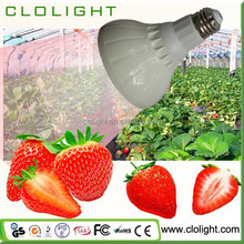 Hydroponic vegetables/fruit/tomato/strawberry/cermination/ blossom/ result of 25W led plants growth lampherry/seed g