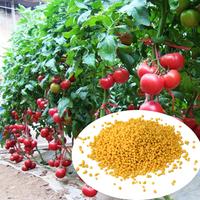 fertilizer packaging bag gypsum fertilizer urea by manufacturer