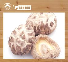 mushroom nutrition white flower shiitake mushroom nutrition