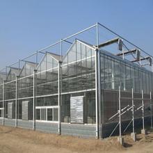 High Quality 10-year Warranty 100%Bayer Marolon UV polycarbonate sheet large greenhouse multi span greenhouse winter greenhouse
