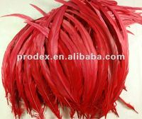 """10""""-12"""" Red rooster tail feather long saddle hackle feathers"""