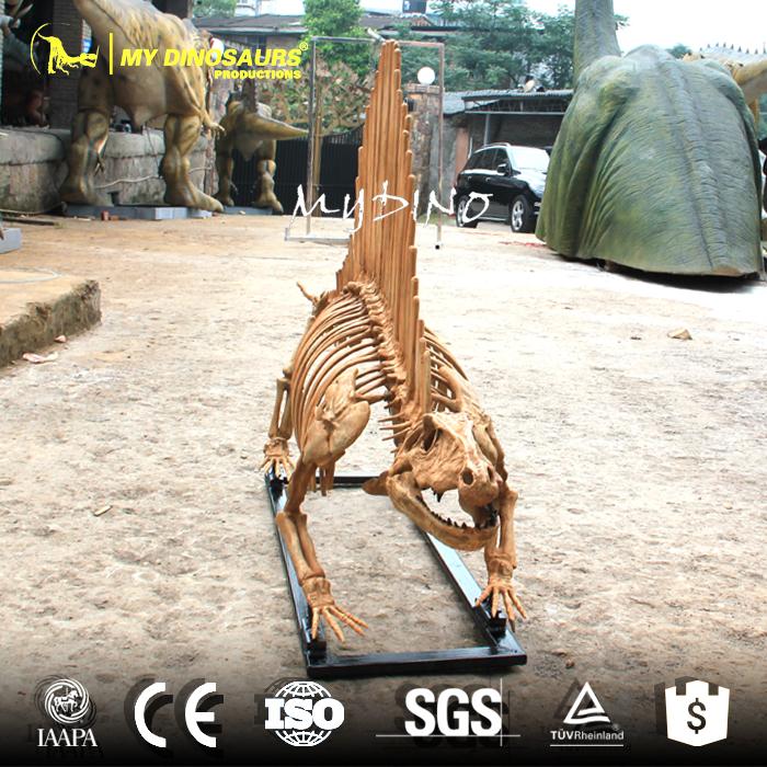 Dimetrodon Skeleton 2.jpg