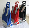 2013 Fashion Shopping Bag Trolley