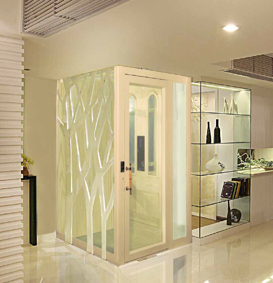 Otse cheap elevator cheap residential lift elevator for for Cheap home elevators