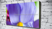 modern abstract photo canvas art
