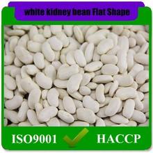 115pcs-185pcs/100g Cheap White kidney beans flat shape in stock,Bulk Packaging all types of White Kidneys beans