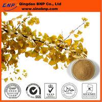BNP Supply 100% Natural Ginkgo Biloba Leaf Extract