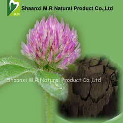 Factory Supply Red Clover Extract Isoflavones 8% Powder