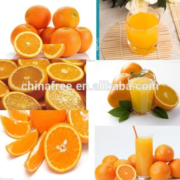 fresh squeezed orange juice machine