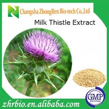 GMP Factory Milk Thistle Extract Silymarin
