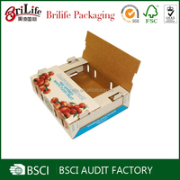 Wholesale fruit and vegetables packaging materials