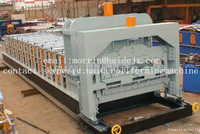 Galvanized steel plate roll forming machine line/tamping plant for color steel