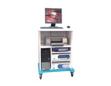 Endoscopic imaging system (workstation)