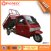 China Made Heavy Load Full Closed Driver Cabin 250CC Adult Cargo Transport Tricycle