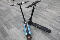 new foldable kid and adult electric scooter windgoo e scooter with 2 wheels
