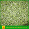 Supply fresh IQF green peas