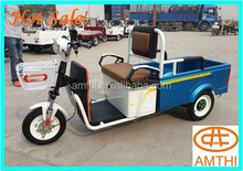 Electric Passenger Tricycle Scooter,Cargo Trike,Wholesale Three Wheel Electric Rickshaw Used For Cargo Or For Passenger,Amthi