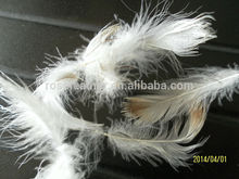 Venta al por mayor de plumas de pato pluma 4-6cm para la venta