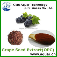 Grape Seeds Extract with Polyphenols 95% and grape seed extract softgels
