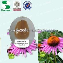 Cichoric acid 2% 4% echinacea herb extract HPLC from Xi'an Honson Bio