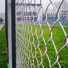 PVC chain link fence covering/PVC coated wire