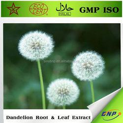 buy natural dandelion extract