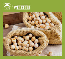 channa dal split desi chickpea bengal gram yellow gram gram chana pois or chicke shihu Chinese chickpeas high quality chickpeas