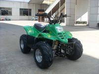 JLA-02-01 All Terrain Vehicle ATV 110