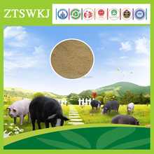 Poultry bio feed for pigs / swine biological concentrated feed
