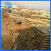 Factory Supply Raw Paulownia Wood