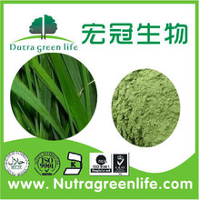 Manufacturer Supply Young Barley Grass P.E/Barley Grass Juice Powder