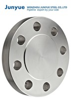 Stainless Steel Pipe Fitting Ring Groove Face Flange