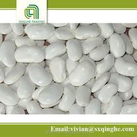 wholesale kidney beans, dry white beans