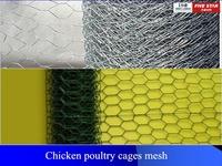 China manufacturer chicken coop hexagonal wire mesh/hexagonal wire mesh/hexagonal wire netting