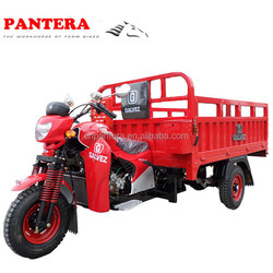 PT250-CA 250cc Water-Cooled Engine for Adult Tricycle