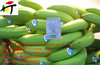 banana ethylene ripening generater / ethylene ripener increasing lemon pulp export sales and value