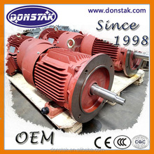 Y2 Series Three Phase Rotor Asynchronous Squirrel Cage Castrion Frame Induction Electric Dynamo Motor