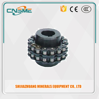 Fenner Replacement Roller Chain Coupling Industrial Couplings Two Sprockets and Chains Easy Mounting Machinery Flexible Coupling