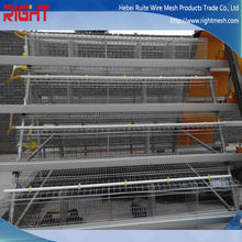 Quality Products Galvanized A Type Strong Structure Chicken Cage