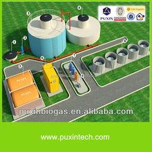 China hight eficiency medium size biogas digester