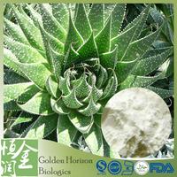 GMP ISO Factory Aloe Vera Extract Aloe
