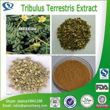 Nutritional Supplements tribulus terrestris, Sex medicine sexual performance enhancer tribulus terrestris extract