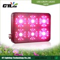 China feito cresce a luz LED 540 w / LED planta luz do painel nomes todos frutas legumes