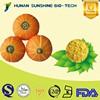 Food Grade No Artificial Flavor Product Organic Pumpkin Dried Vegetable Powder