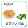 Hot sale Ginkgo Biloba Extract Powder in stock !