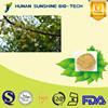 Factory 0.3% Azadirachta EC/ Natural Neem Oil for biological Pesticide