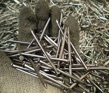 Polished galvanized common wire nails