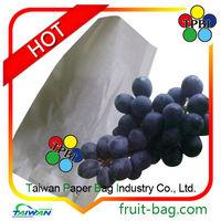 Taiwan grape fruit protection paper bag